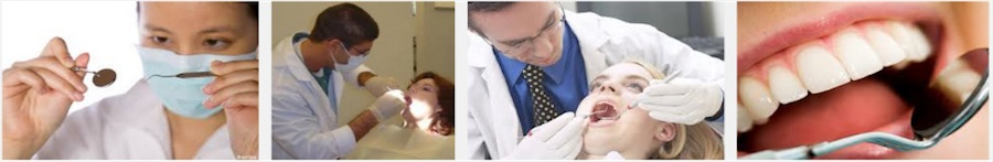 Directory of Dentists